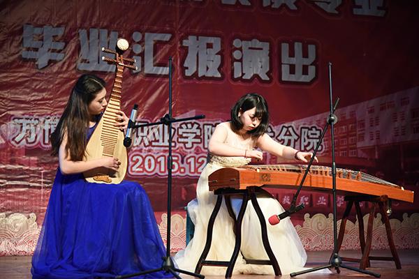 琵琶,古筝二重奏《春江花月夜》(